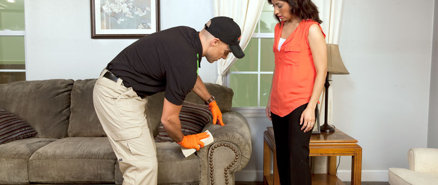 Martinsburg, WV carpet upholstery cleaning
